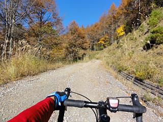 折草峠から陣馬形山へのアプローチ