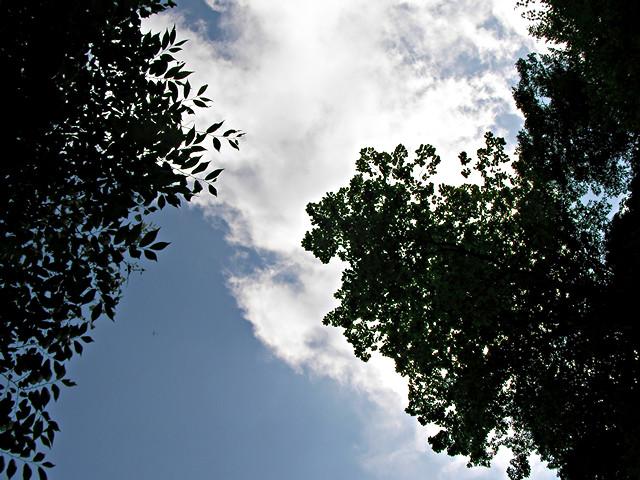 神坂峠で寝そべりながら眺めた空