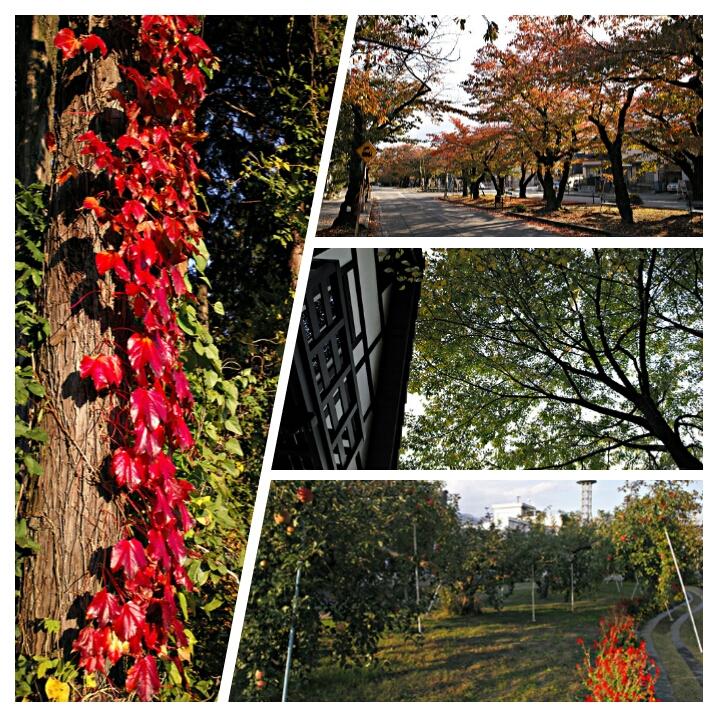 飯田の秋の風景