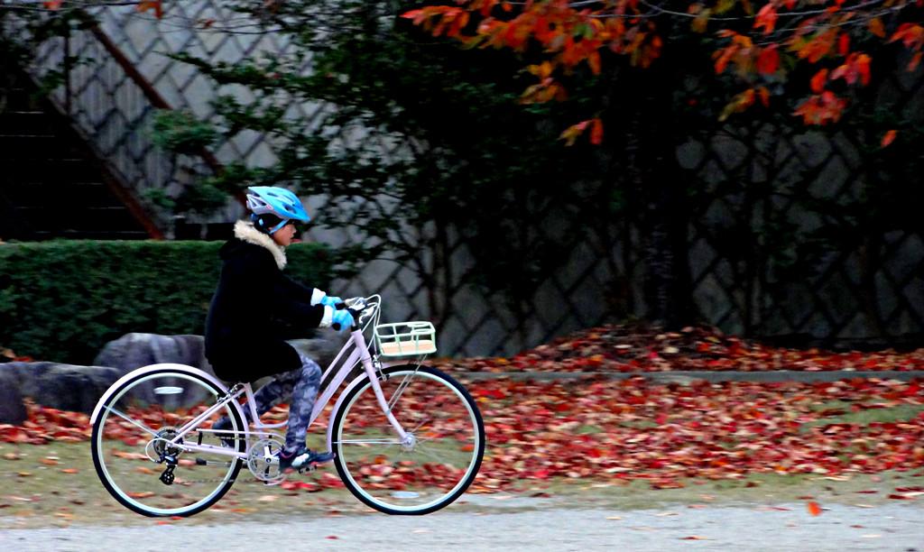 次女Y氏の新しい自転車