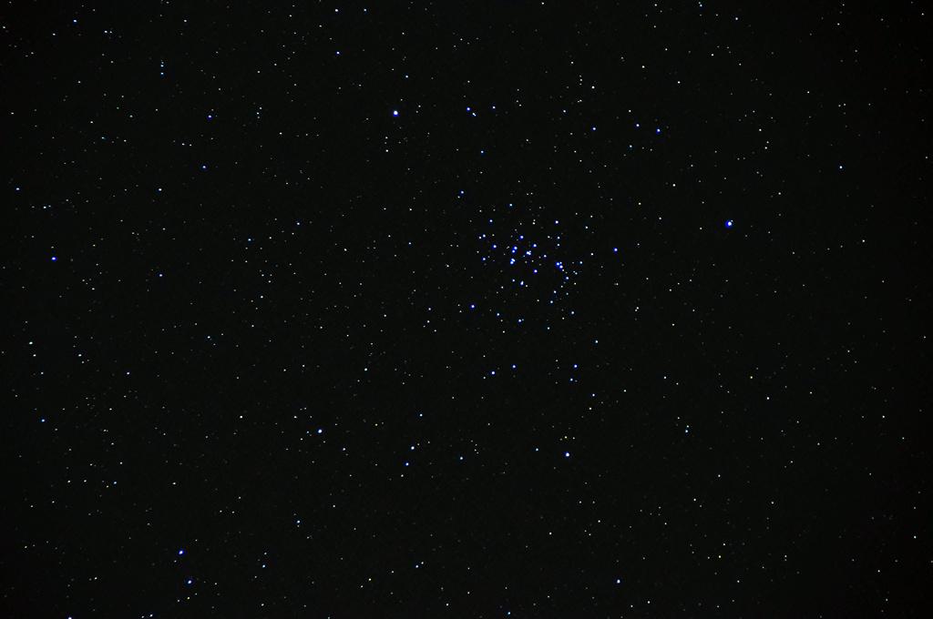 プレセペ星団 M44
