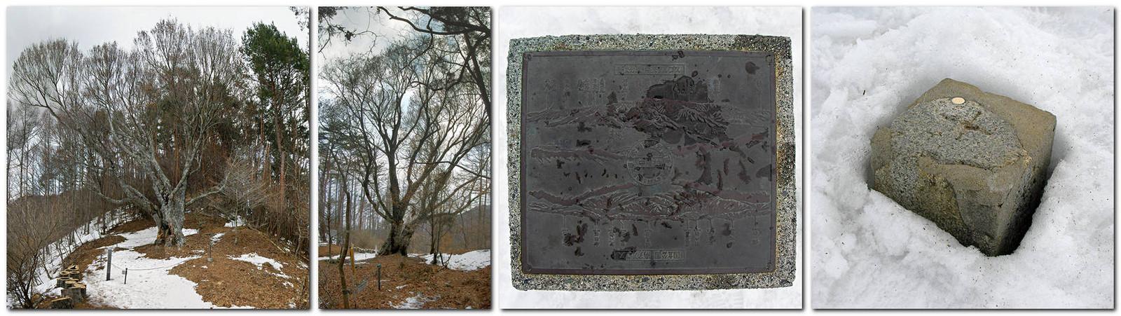 2014年3月16日丸尾のブナと陣馬形山頂上碑&三角点