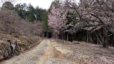 佐倉神社から梅ヶ久保神社へと抜ける林道