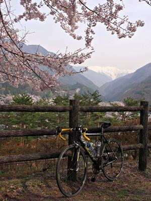 2014年4月16日:大鹿村大西公園にて