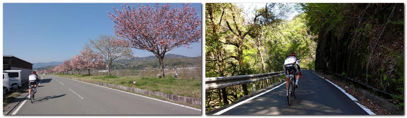 2014年4月23日「南信州サイクリング」