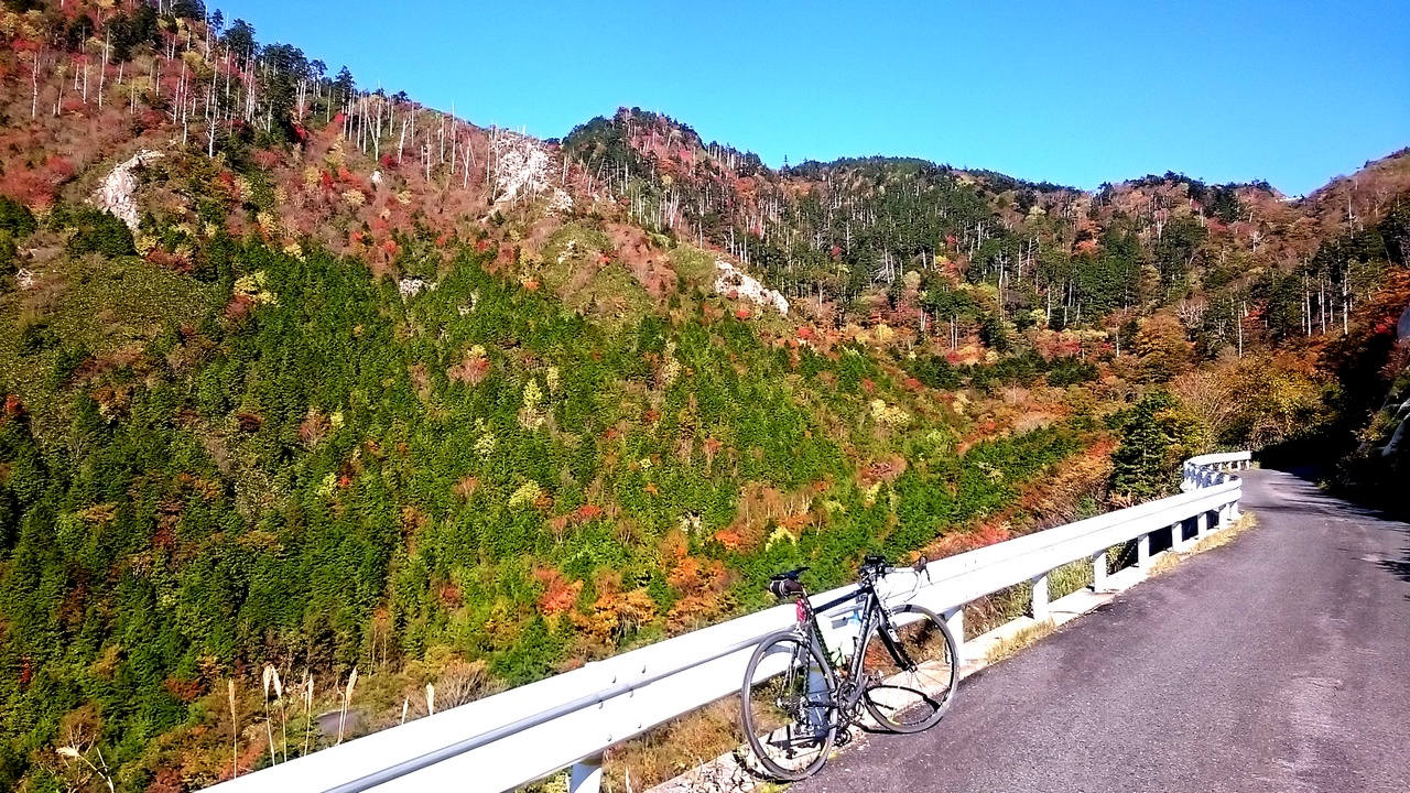 神坂山の紅葉