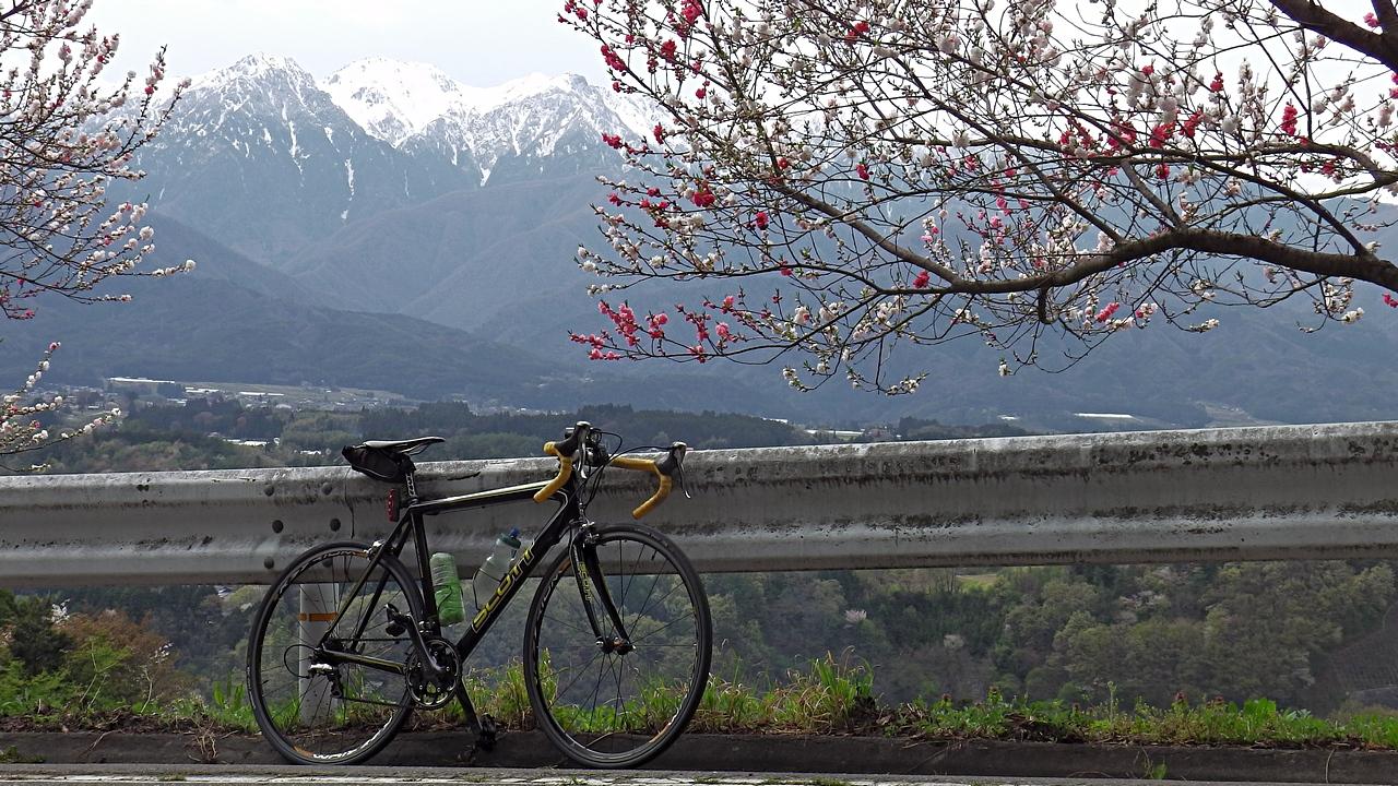 中川村美里のハナモモと南駒ヶ岳